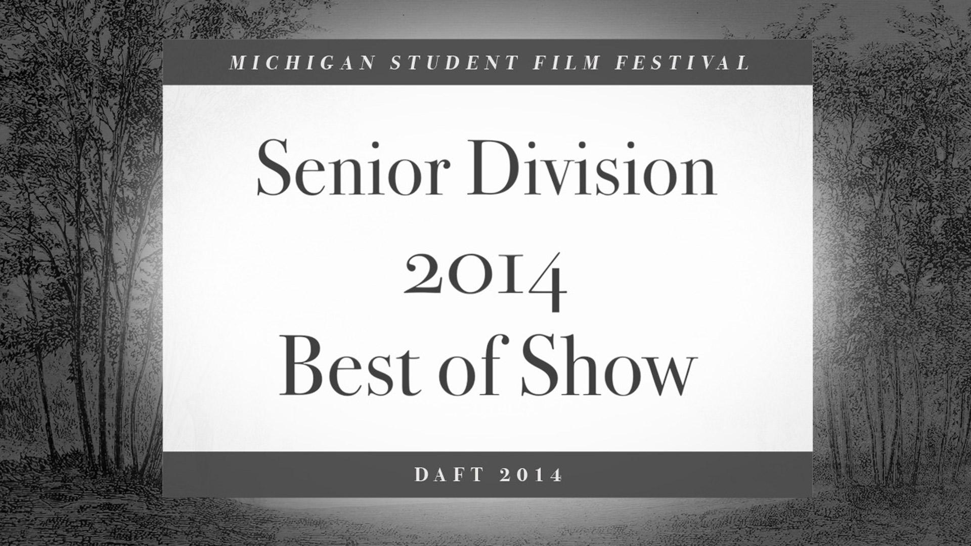 DAFT Festival 2014